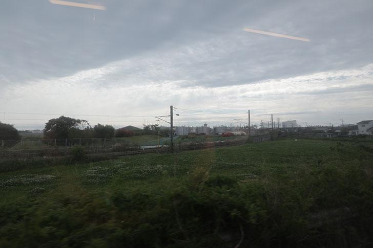 宮崎・青島の旅